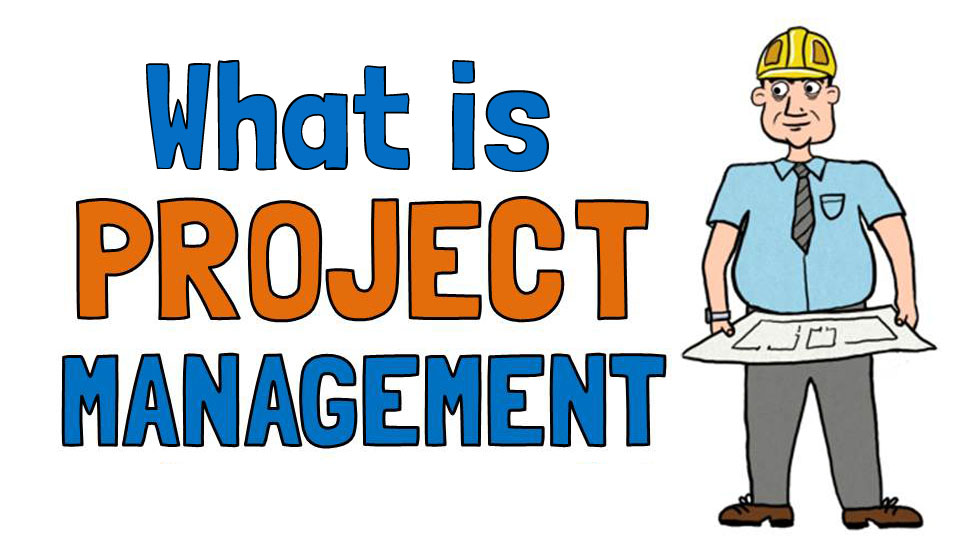 define project manager Program manager vs project manager — to understand how these two similar roles differ their role is to map out and define the list of dependent projects that need to be completed to reach the overall goal when it comes to the program.